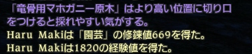 2010_12_14_250.jpg