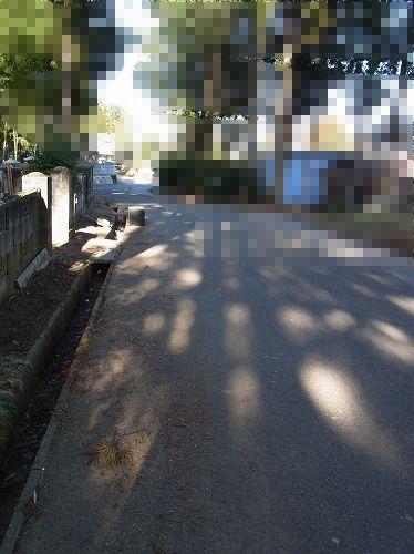 RIMG0368a.jpg