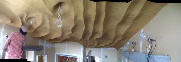 波を打つ天井 =介護住宅・建築にできること=