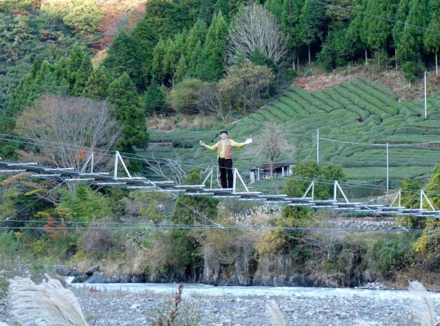 入島の吊橋9