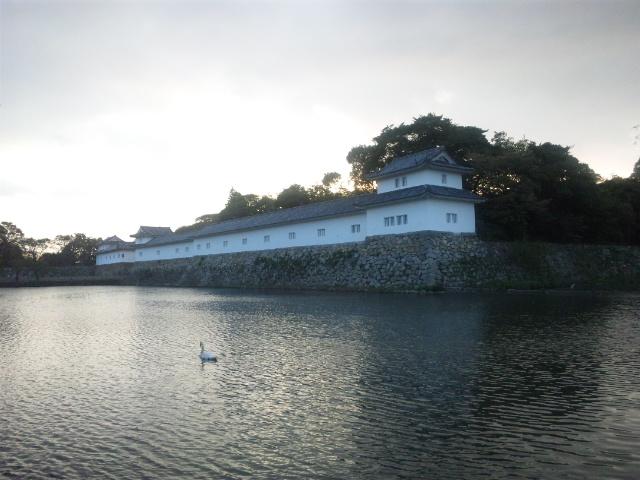 彦根城夕暮れ