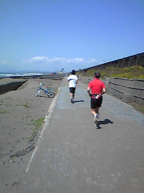 海岸の散歩コース