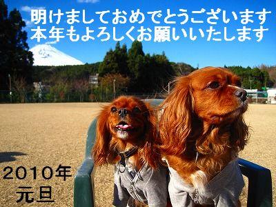 IMG_3560.jpg