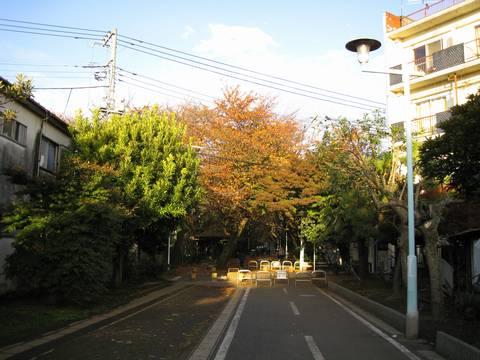 IMG_7316-01.jpg