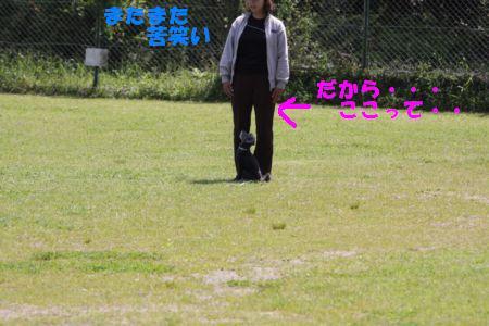 IMG_1095-1.jpg