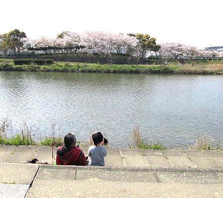 A-muromiawa-4.jpg
