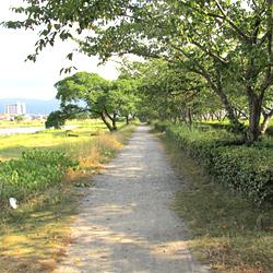 e-muromigawa-6.jpg