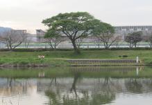 g-muromigawa-2.jpg