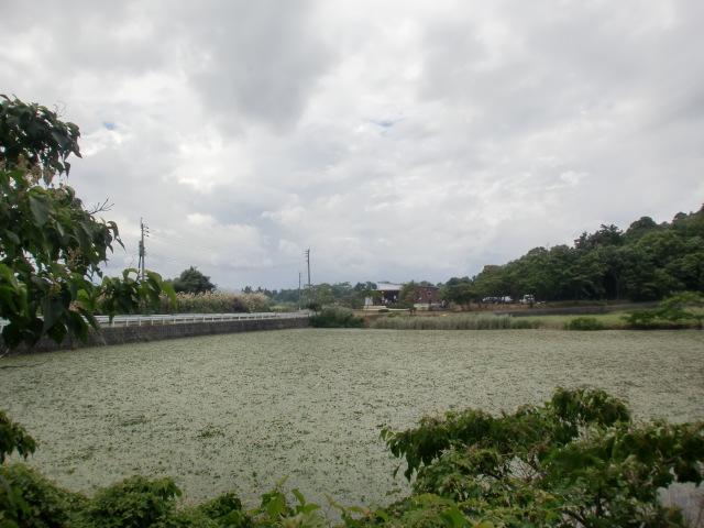 100810稲童、焼き山、タジン 009