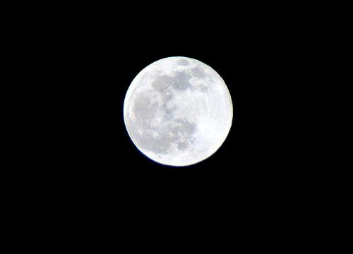 20091202の月