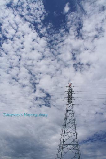 photo20110825.jpg