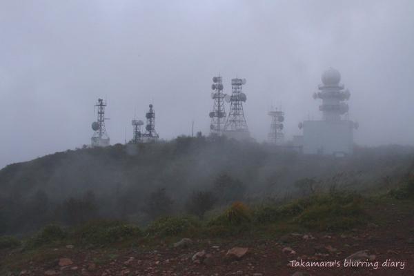 ゴツゴツした石ころと潅木と霧・・ちょっと薄気味悪い雰囲気でもありました。