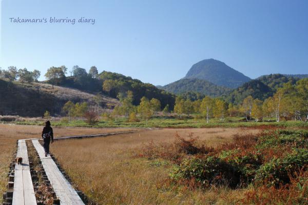 小さい湿原ですが、木道も整備されていて気持ちよい場所でした