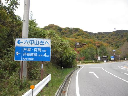 2009_11_19_04.jpg