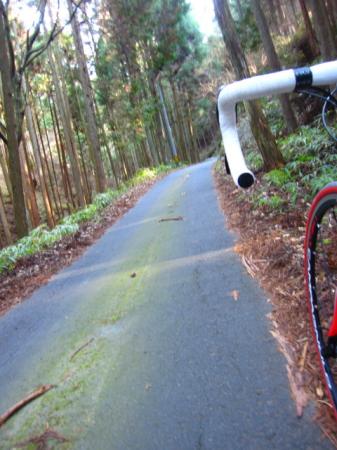 2009_12_16_03.jpg