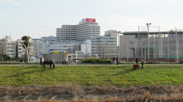 2010_02_13_01.jpg
