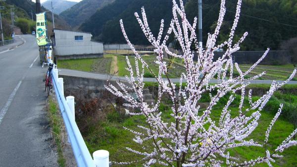 2010_03_18_03.jpg