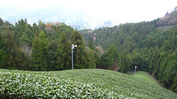 2010_03_18_05.jpg