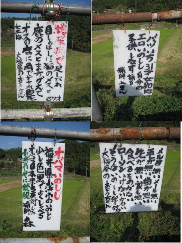 2010_10_13_08.jpg