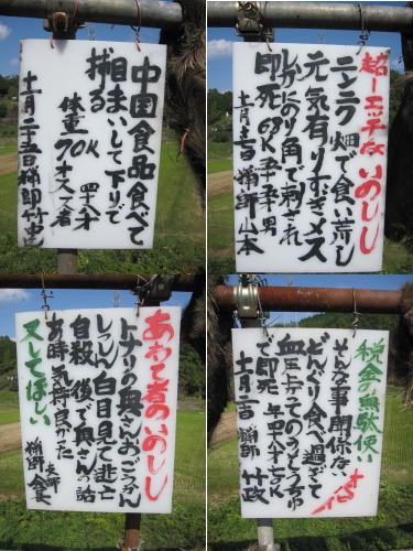 2010_10_13_09.jpg