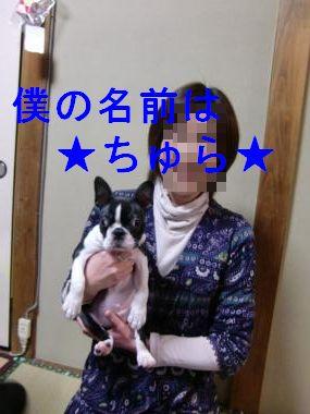CIMG0019_convert_20100103220723.jpg