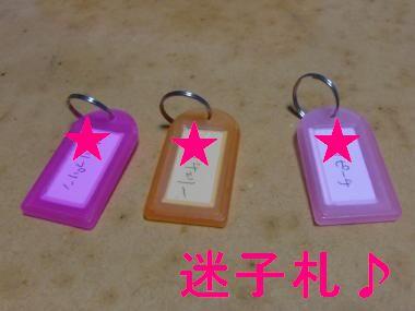 CIMG0256_convert_20091222215943.jpg