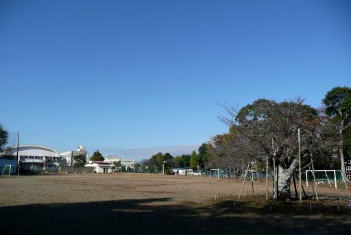 那珂湊第一小学校の校庭