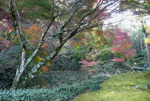 西山荘前の紅葉