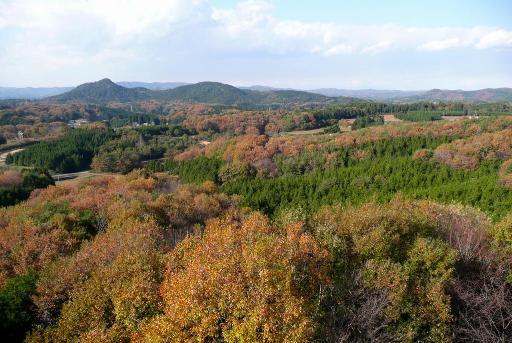 展望塔からの佐白山