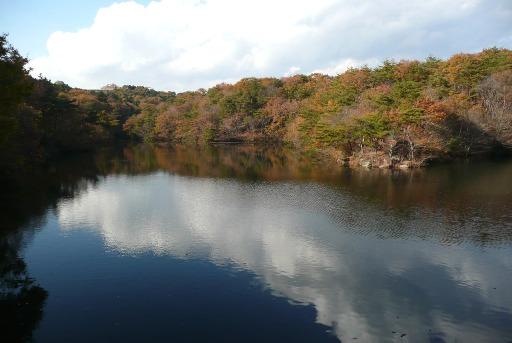 白鳥湖の紅葉