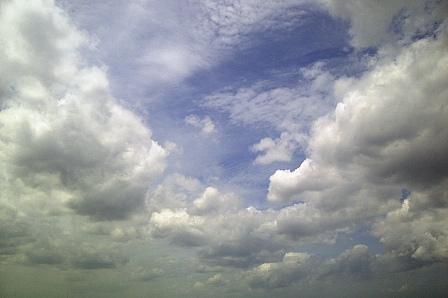 IMG-20120123-00945.jpg