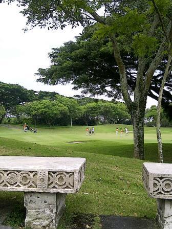 IMG-20120331-01062.jpg