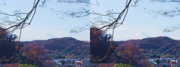 富士山が見えて感動