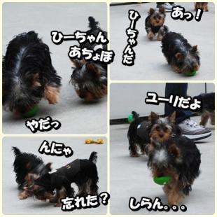 yuhi1.jpg
