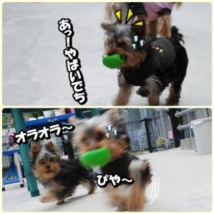 yuhi3.jpg