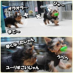 yuhi4.jpg