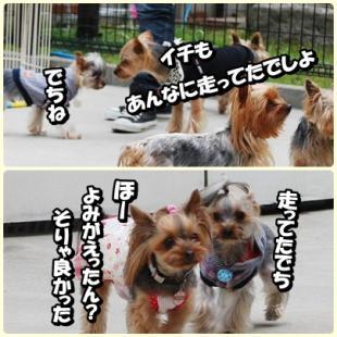 yuhi5.jpg