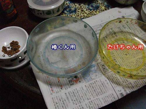 001_20100104170640.jpg
