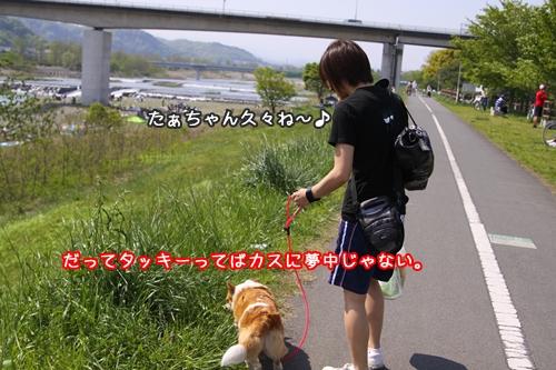 001_20100504173719.jpg
