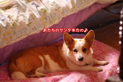002_20091207194825.jpg