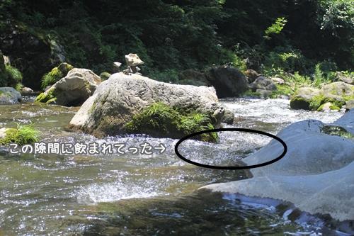 007_20100727205932.jpg