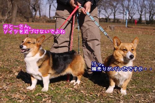 013_20100124185043.jpg