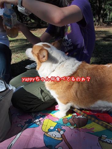 055_20101013114848.jpg