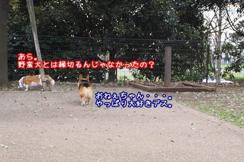 059_20091116202340.jpg