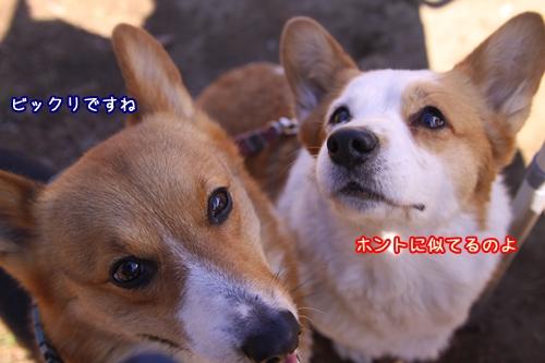 083_20100124185211.jpg