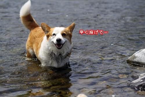 089_20100518191243.jpg
