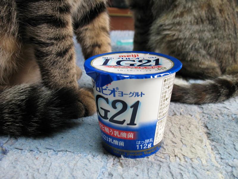 KINAKO-LG21.jpg