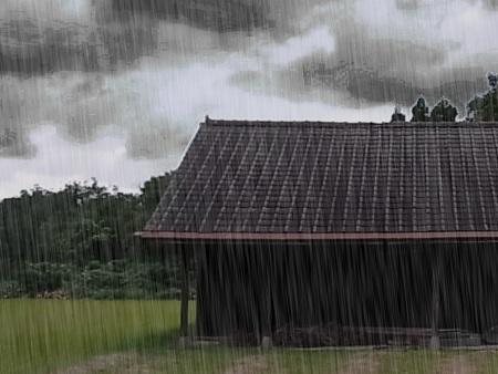 KINAKO-RAIN.jpg