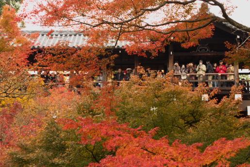 東福寺ー2