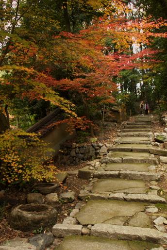東福寺ー11